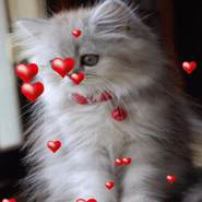 nastyao954696's profile photo