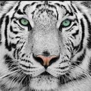 gerardog74322's profile photo