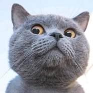 tranl697777's profile photo