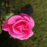 bilalb9824's profile photo