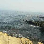 salimd658238's profile photo