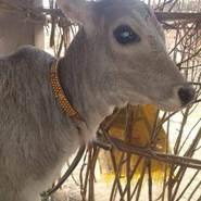 thabramaja's profile photo