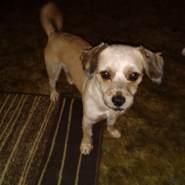 ryderl293247's profile photo