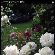 qw12356's profile photo