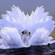 hayatn510695's profile photo