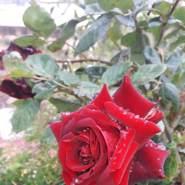 abrahyma736171's profile photo