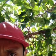 alexandere191's profile photo