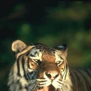 aalyaa502345's profile photo
