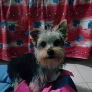 angelg120045's profile photo