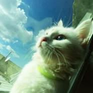 ktr7665's profile photo