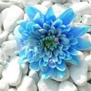 amira709911's profile photo