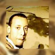 insightfulc's profile photo