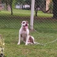 rodrigo998362's profile photo