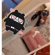 monal74's profile photo