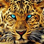 srkhts878934's profile photo