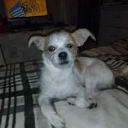 dezzyd87041's profile photo