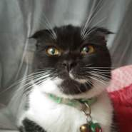 user_fgsx48's profile photo