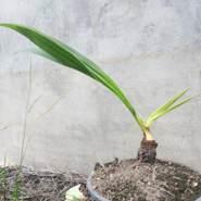 newu599's profile photo