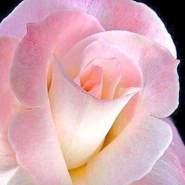 alexander38806's profile photo