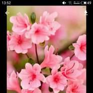 meerad129579's profile photo