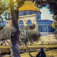 mohammedb343965's profile photo