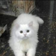 hadiela759817's profile photo