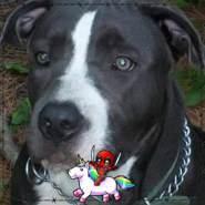 joeb523806's profile photo