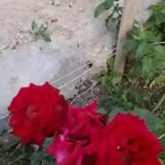 mm254655's profile photo