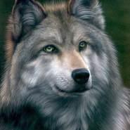 raulp523767's profile photo