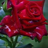 fouzian497888's profile photo