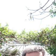 homayouna378289's profile photo
