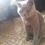 Ddaniel1995's profile photo