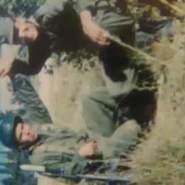 bairemt's profile photo