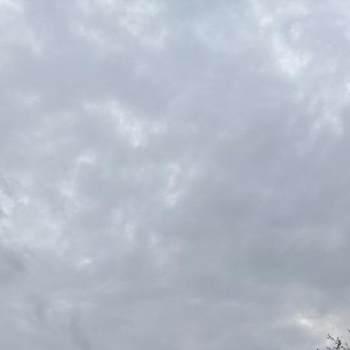 alzoola761863_West Kordofan_Alleenstaand_Man