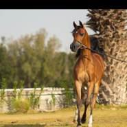 kuwaitk638811's profile photo