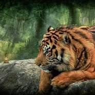 soraya411011's profile photo