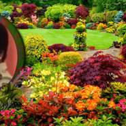 shoshanam's profile photo