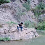 mus439085's profile photo