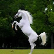 heshama724643's profile photo