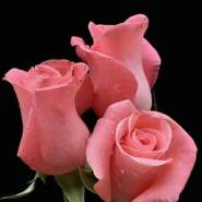 erickdavid81360's profile photo