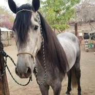 julioa355271's profile photo