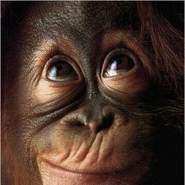 silverperez's profile photo