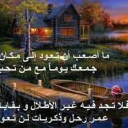 Mahmoufalihamd's profile photo