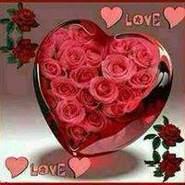 user512588619's profile photo