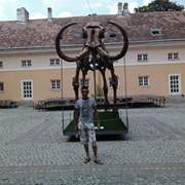 miroslavgrujic's profile photo