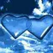 shalash294's profile photo