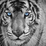 buraky_16's profile photo