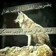 alaaalshmary1's profile photo