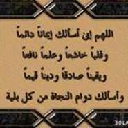 yousriAbdaalati's profile photo