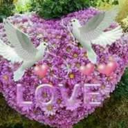 user962318888's profile photo